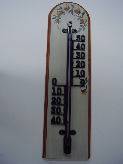 Thermometer 1475
